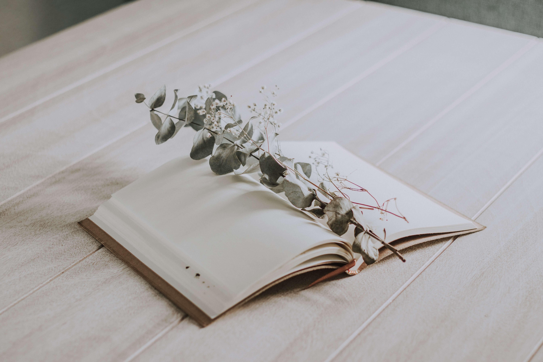 Date book
