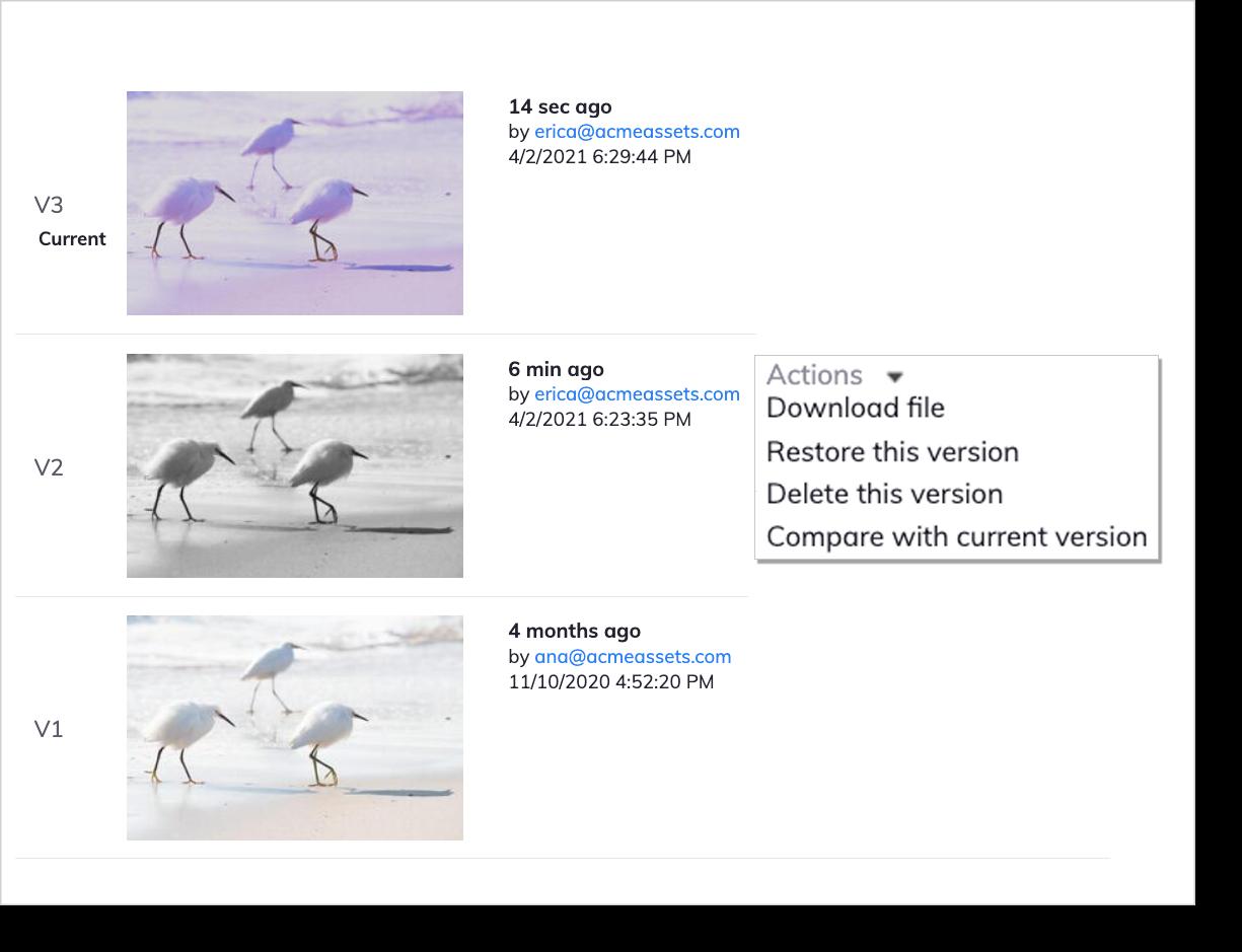 dam version control screenshot