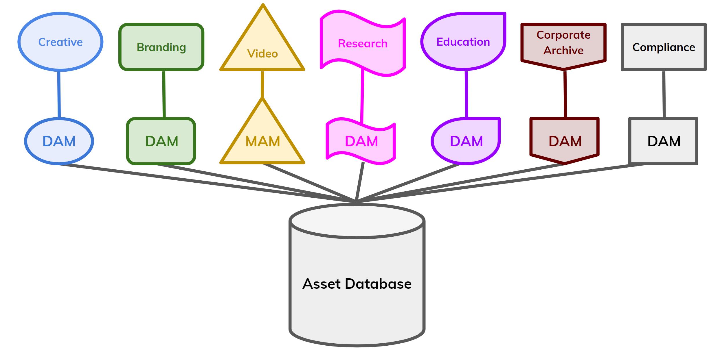polymorphic DAM chart