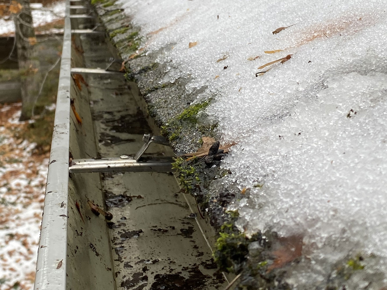 Gutters that are clean and functioning properly