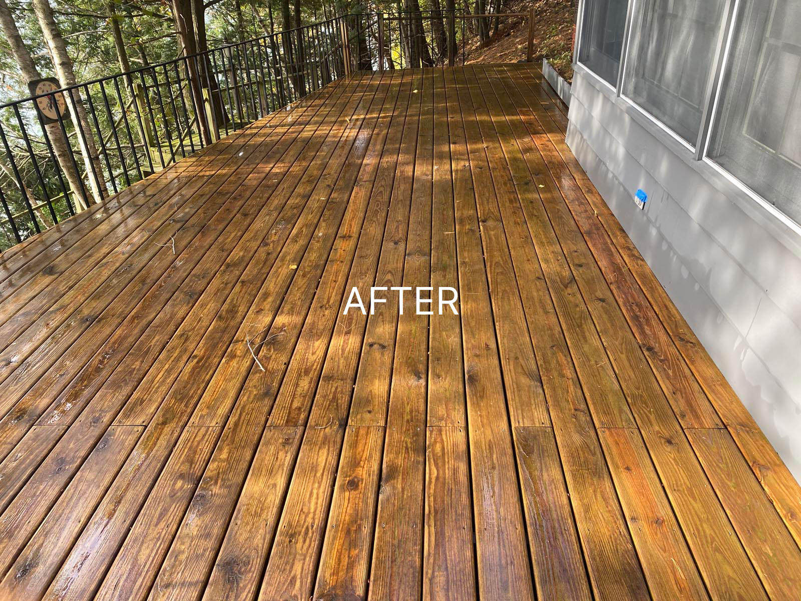 clean deck after soft washing