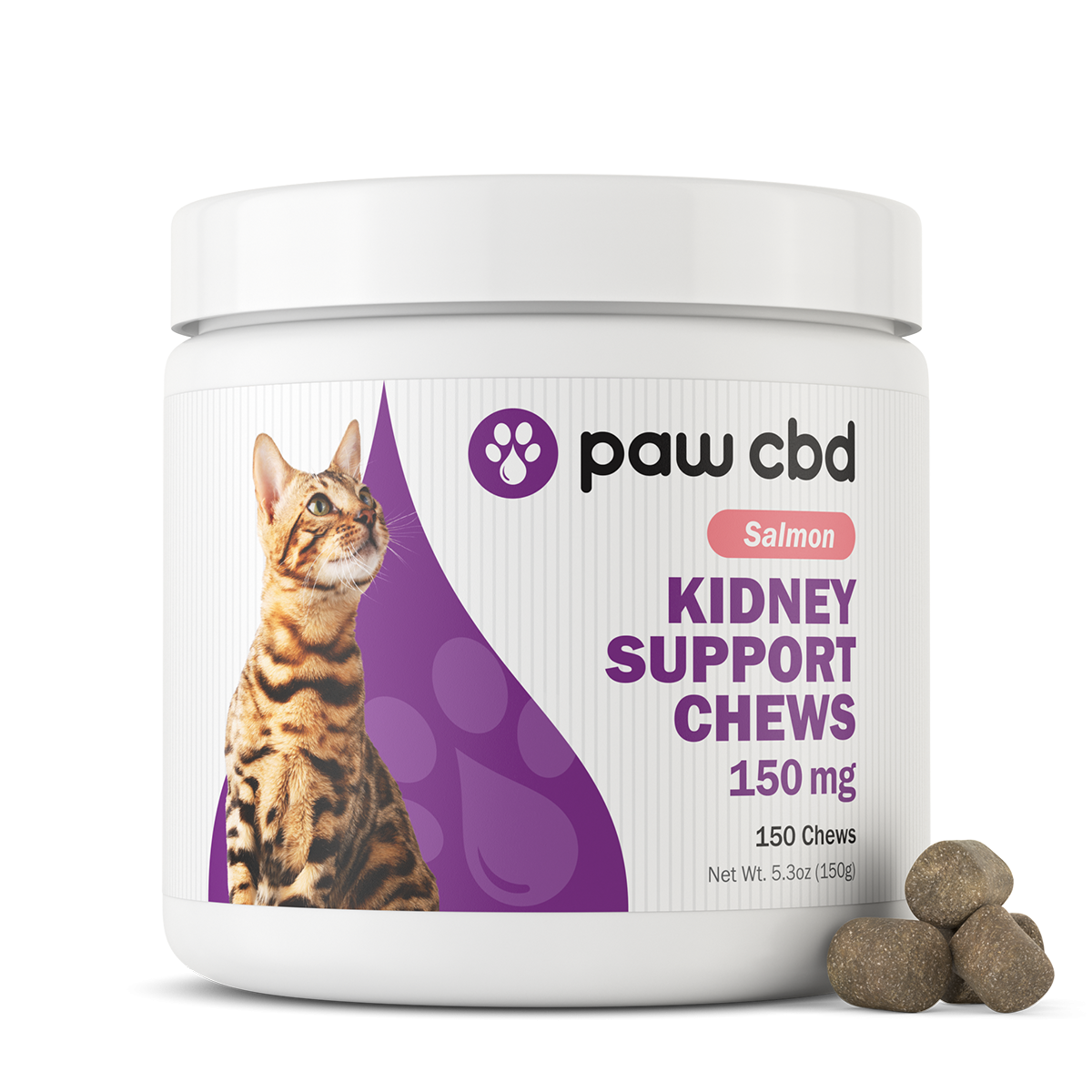 Kidney Support Chews - for Cats