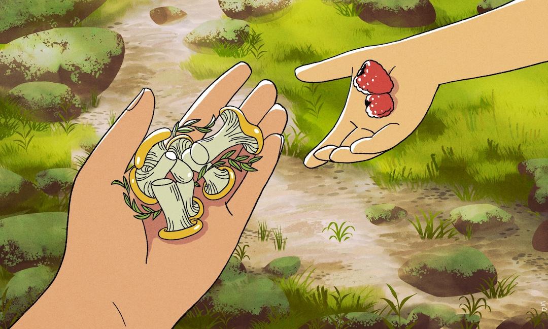 Illustrating the rewarding youth education of foraging