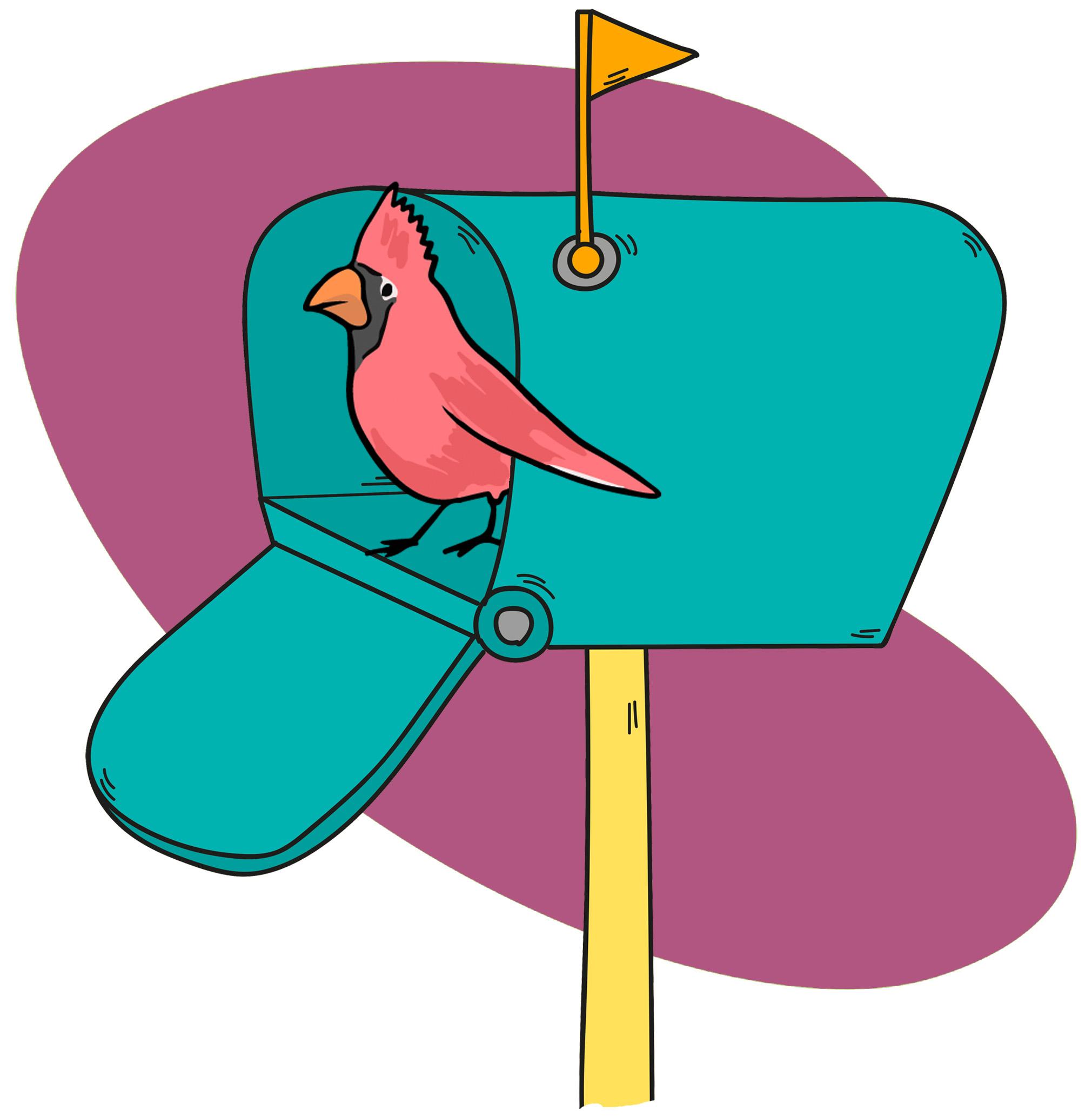 A cute bird peeking out of a mailbox