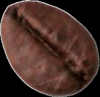 A coffeebean