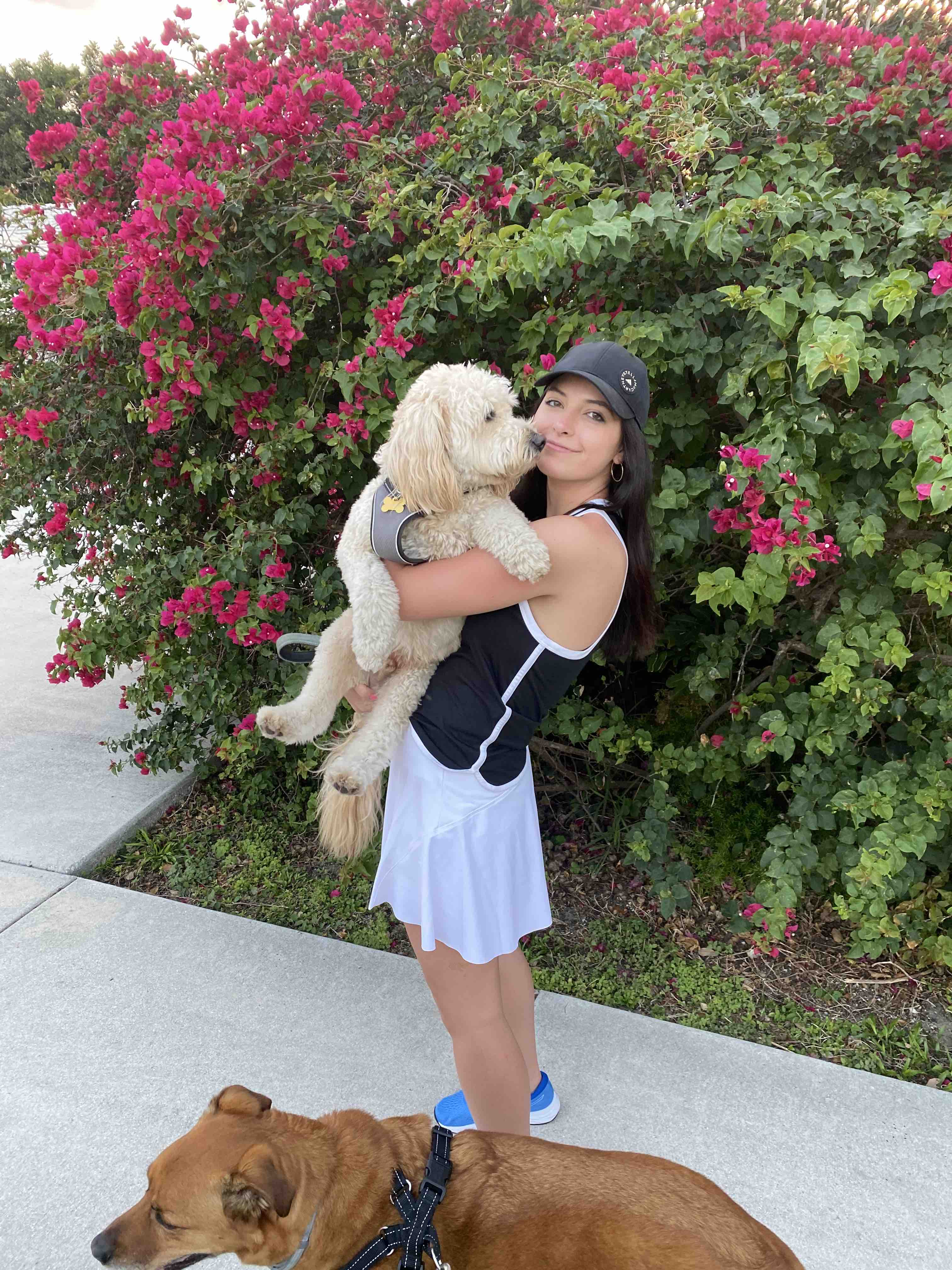 Kelly Hooper with dogs