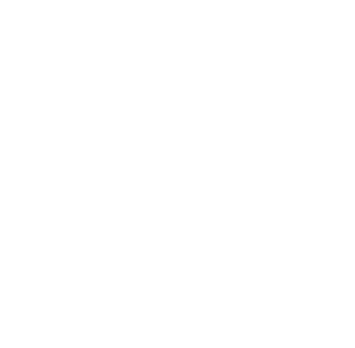 MSS Cleaning Logo