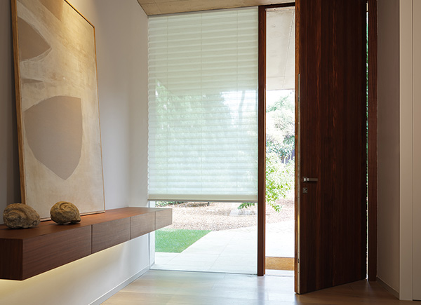 Entrance with window furnishing