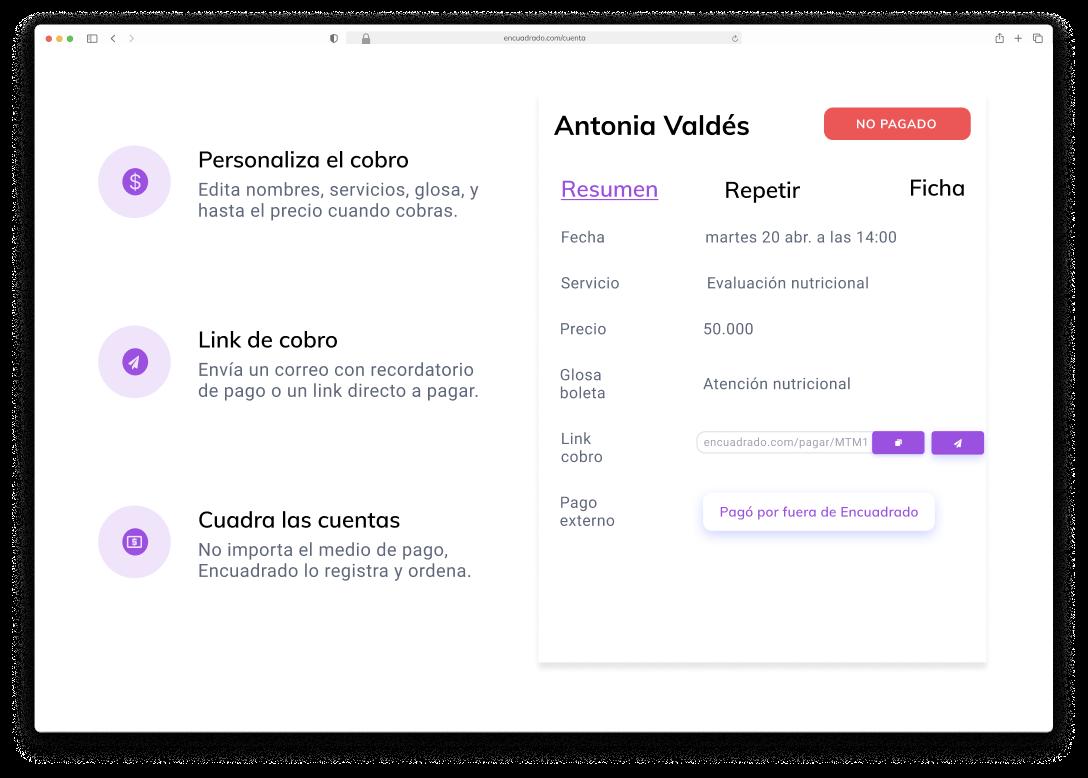 plataforma de cobros y agendamientos online