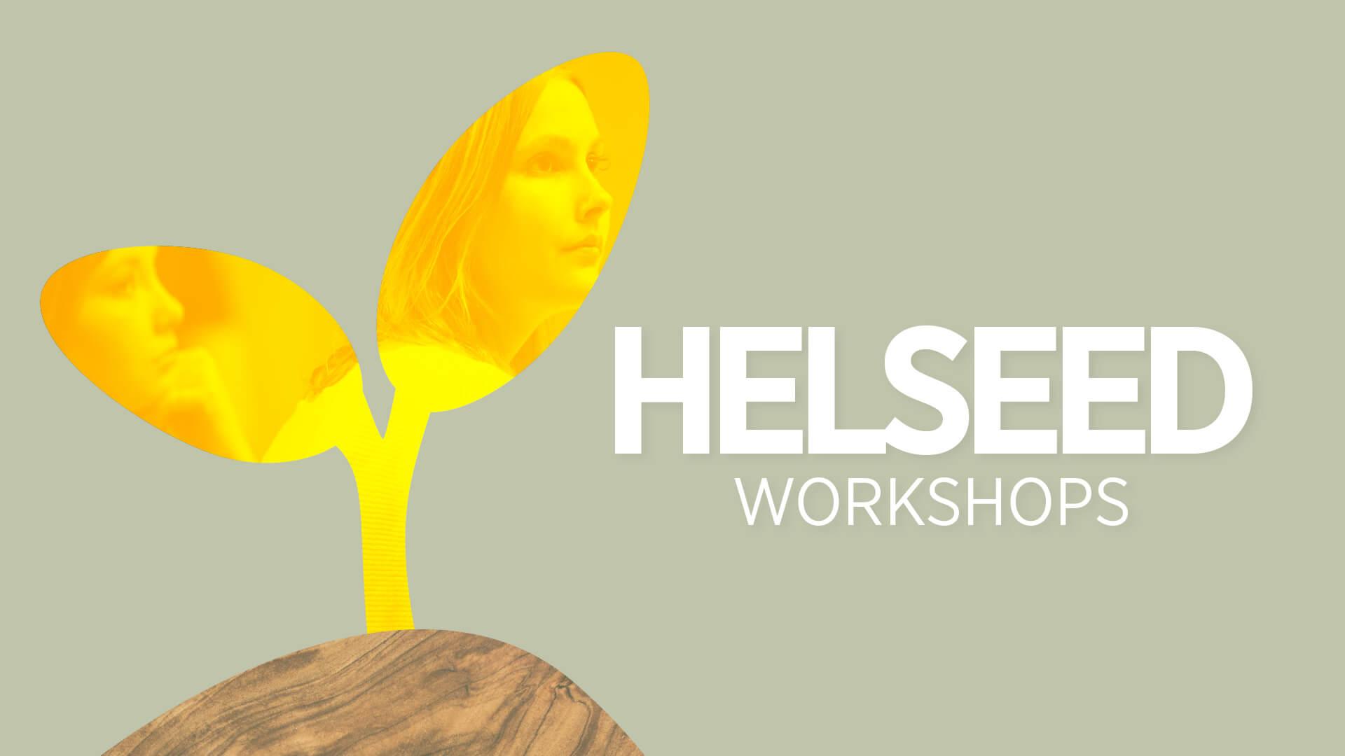 Helseed program visual