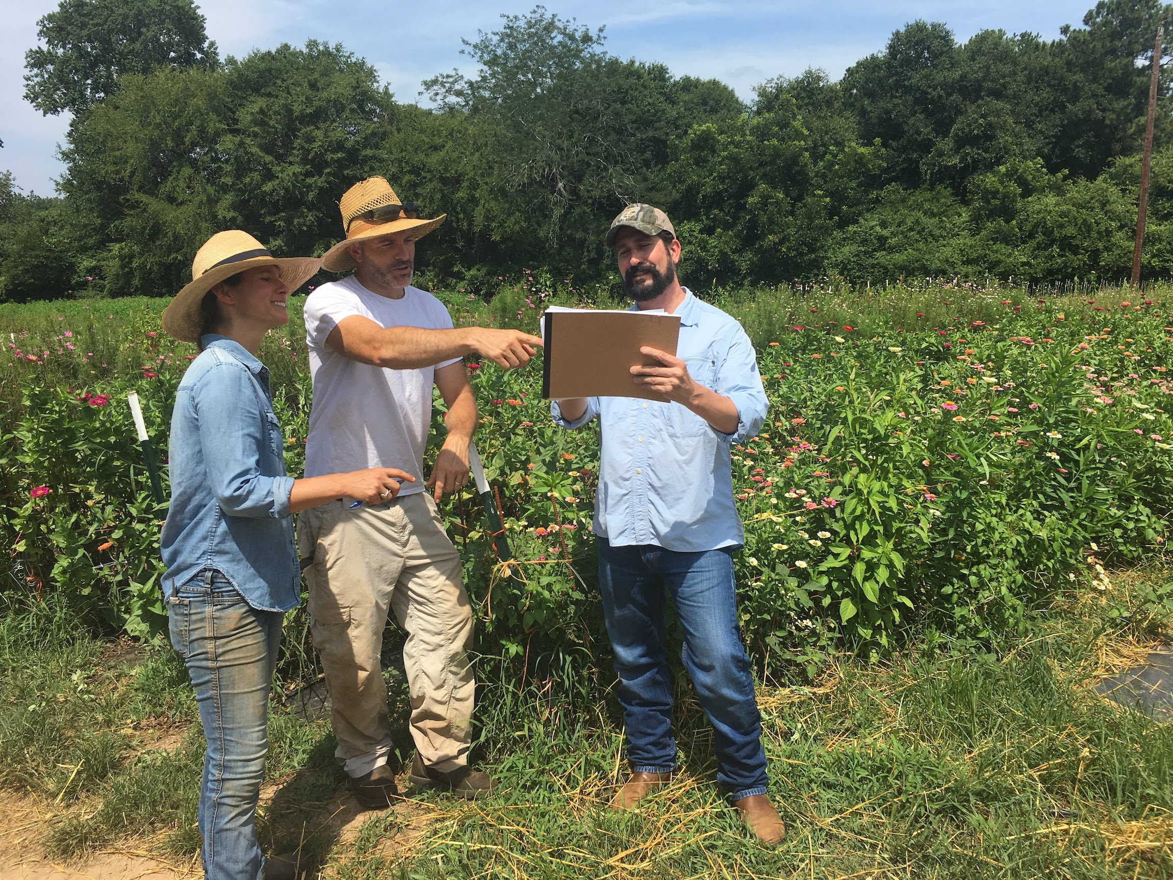 Farmers and Grocery store workers looking at crops to determine which will go to the stores.