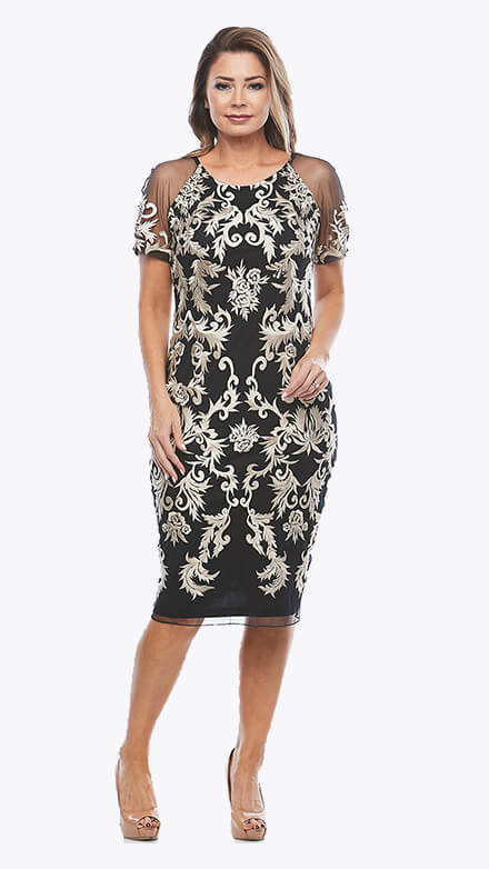 Embroidered lace mesh dress with semi sheer short sleeves