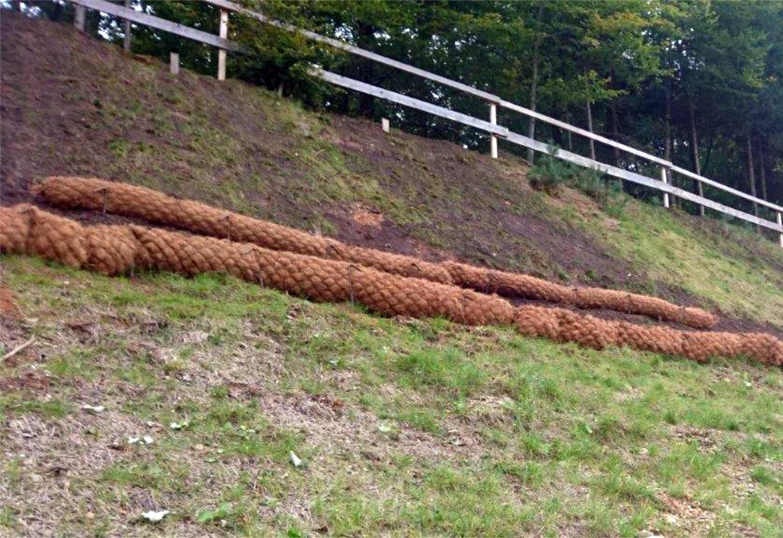Kokosovi valji pred položitvijo