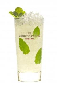mount gay- mojito