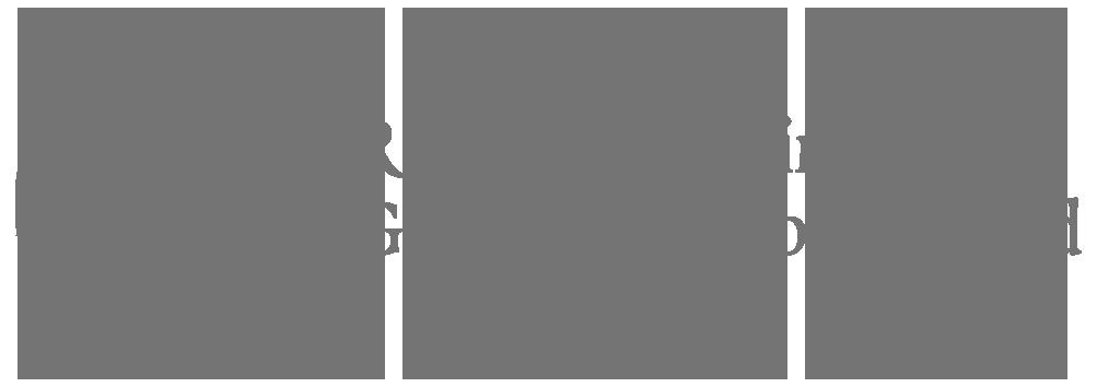 "Government of Ireland logo; Irish: ""Rialtas na hÉireann"""