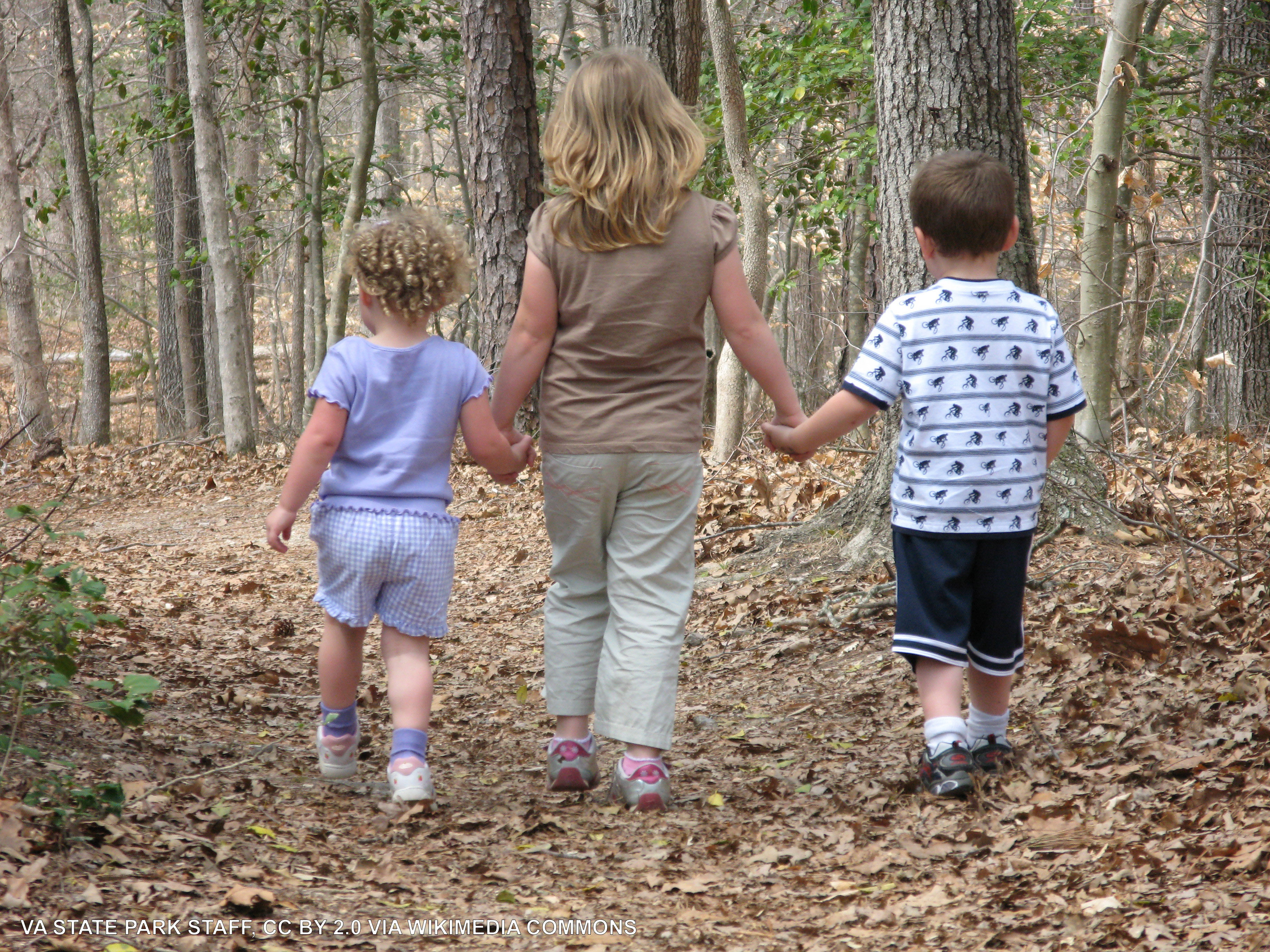 Three children, backs to camera, walking down a trail