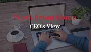 Work from home: CEO's view