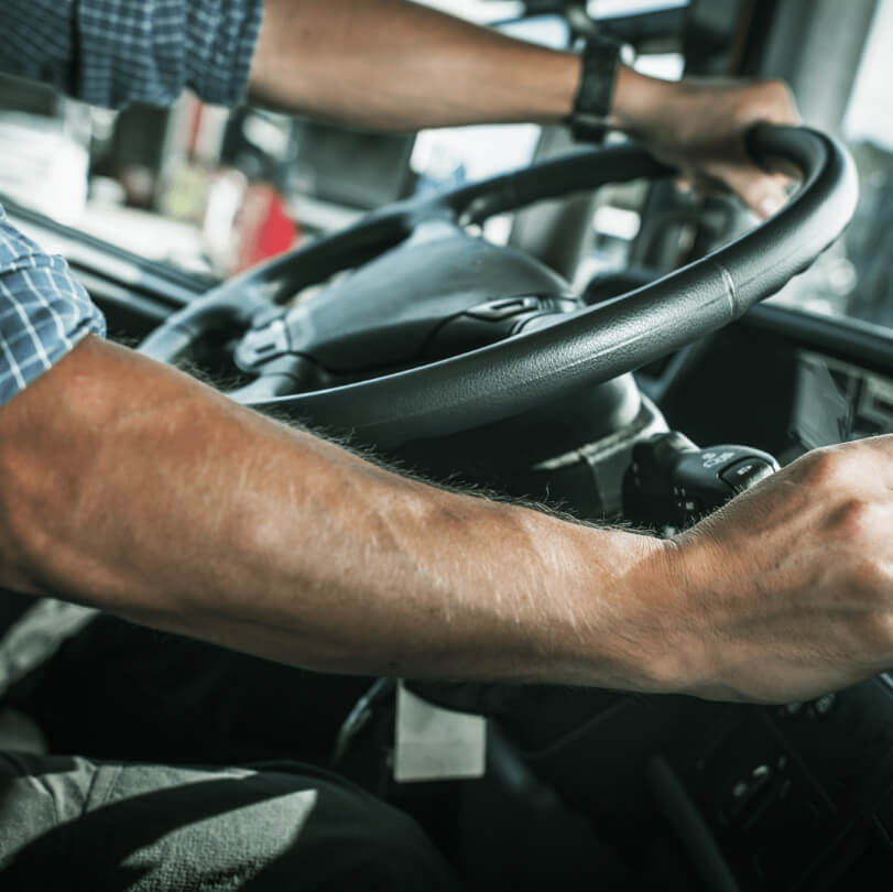 Professional Car Drivers at Dreamline Logistics