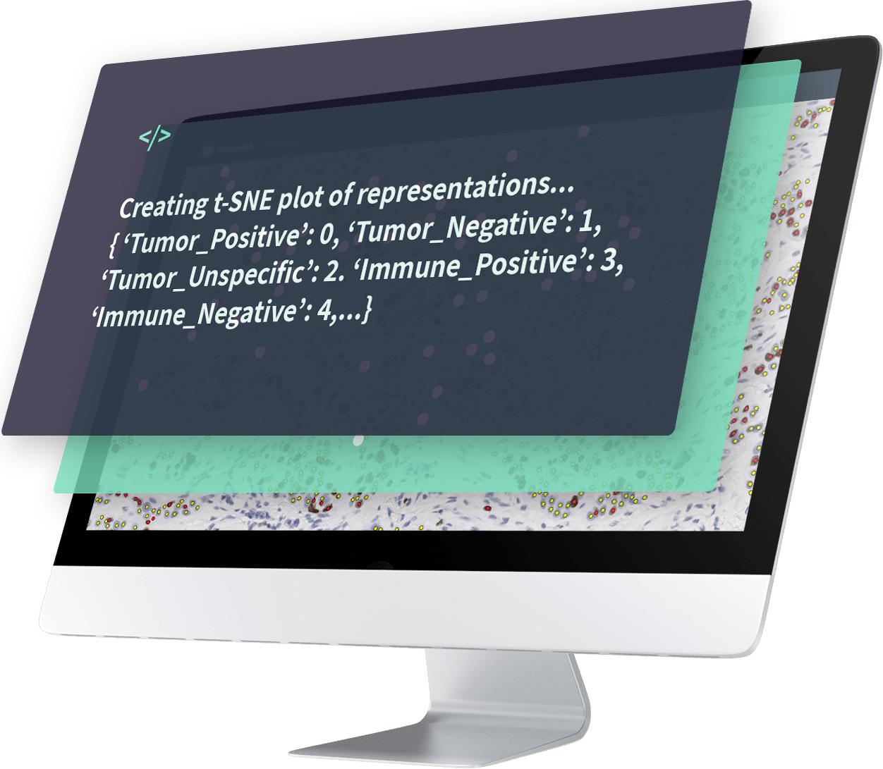 Concept image of Mindpeak code on a monitor