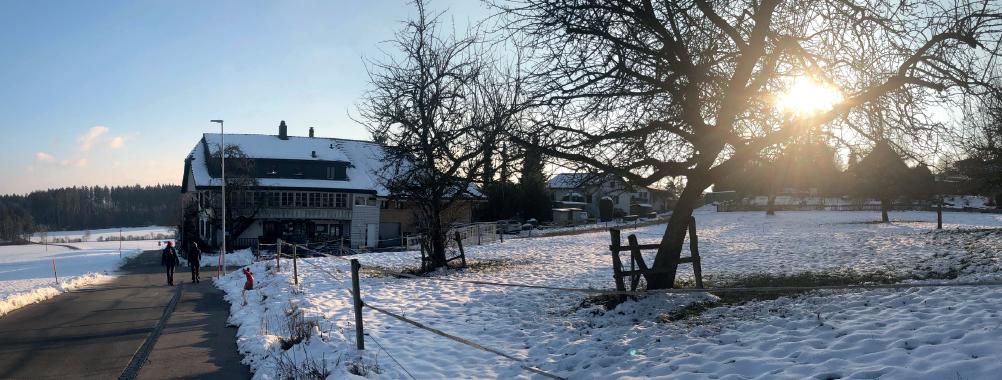1'072 m2 Bauland in Meikirch