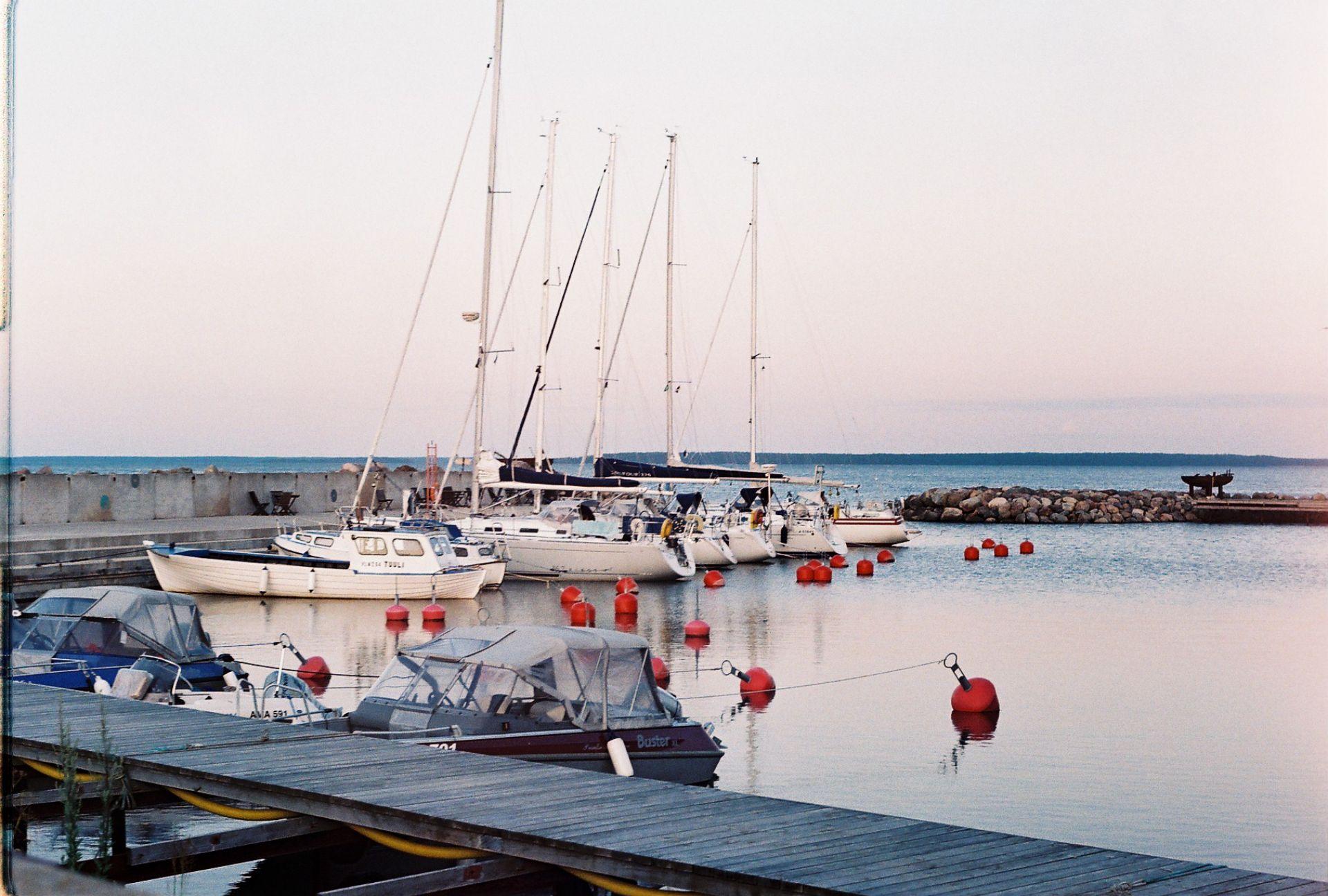 Meresõber Viinistu sadamas