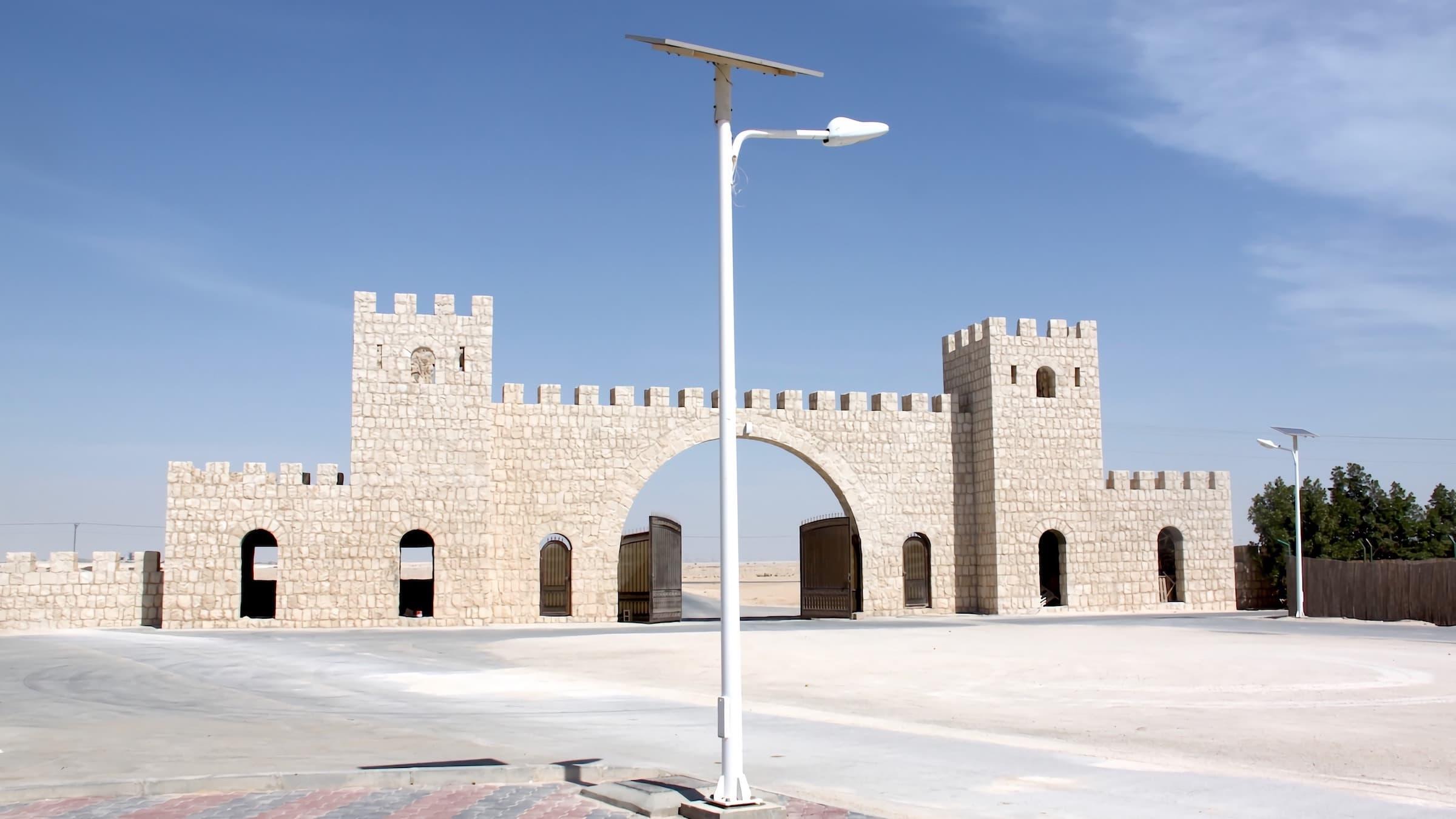 solar-street-light-split-type-30-watts-in-Qatar