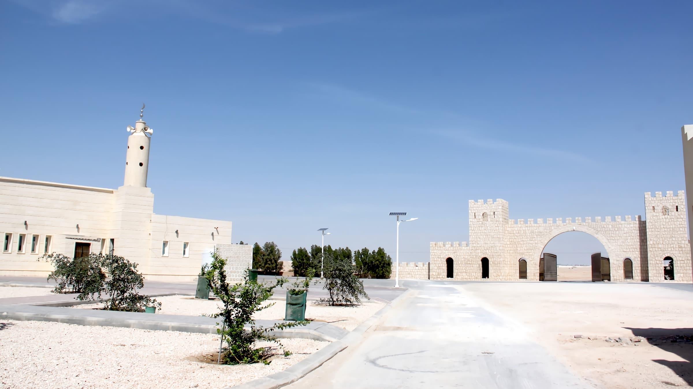 solar-street-light-30-watts-split-type-installation-in-Qatar