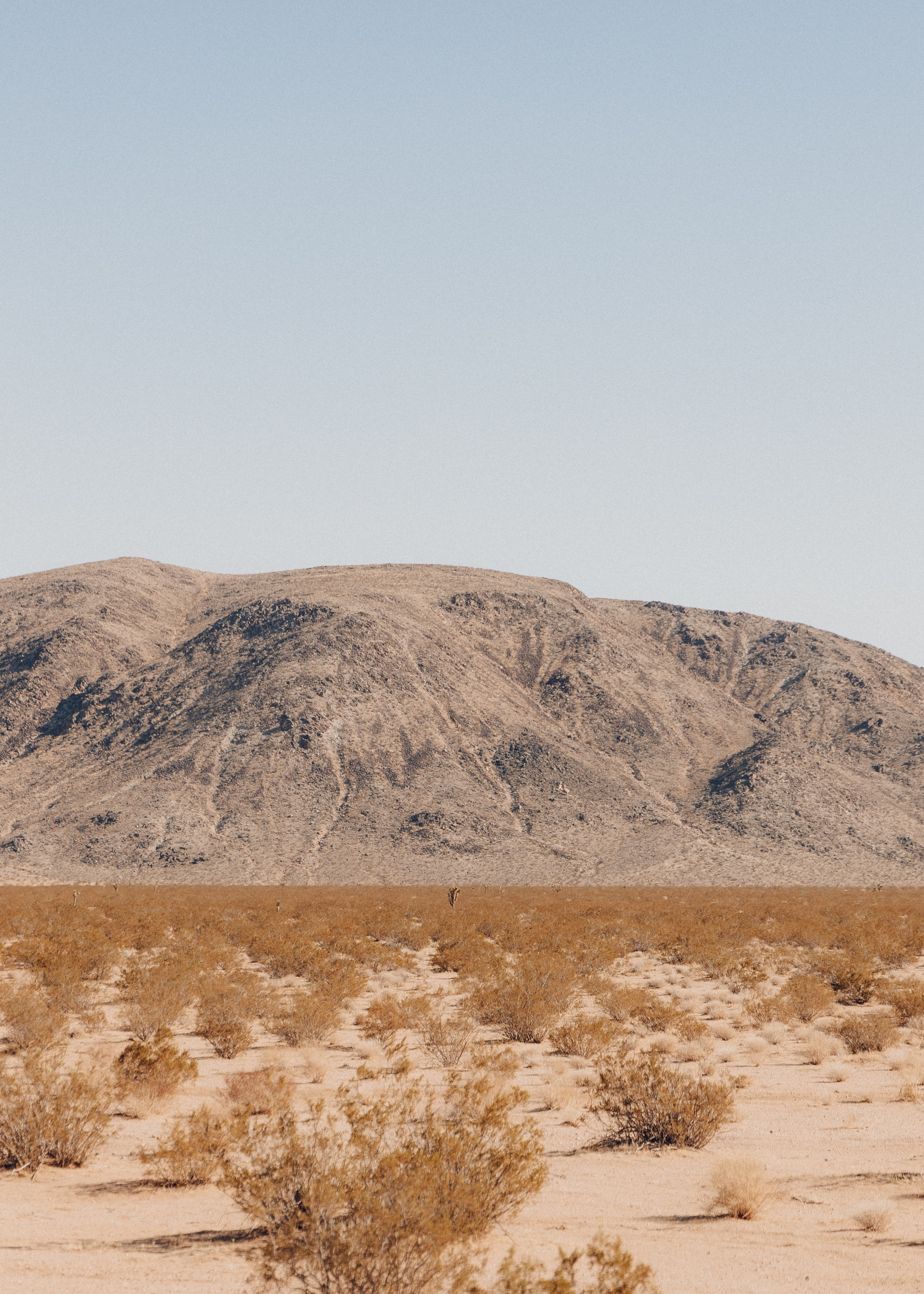 Picture of a desert mountain