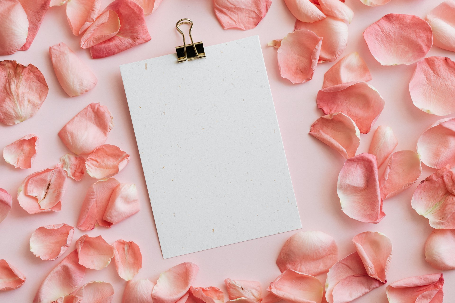 A blank sheet of paper with rose petals around it, inviting you to write your sexual wants on it.