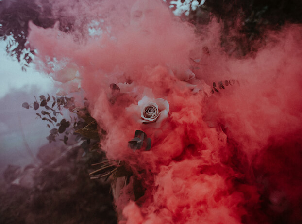 A white rose engulfed in red smoke