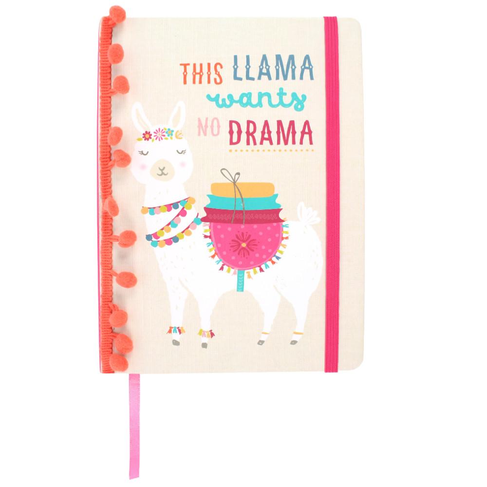 A5 Llama Notebook