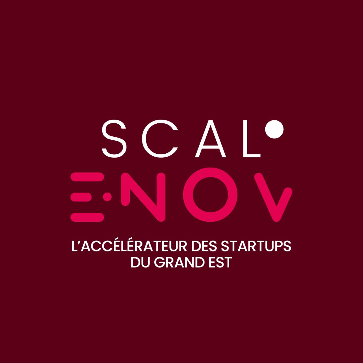 Scale E Nov