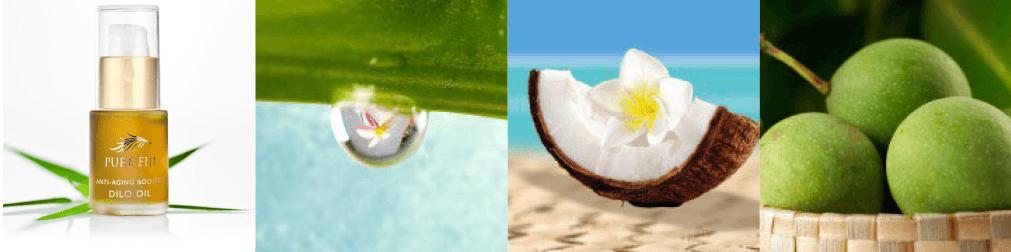 Pure Fiji dilo oil ingredients