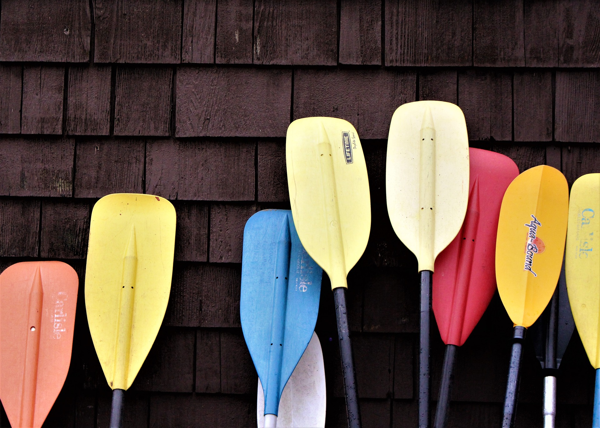 kayak paddles against cabin