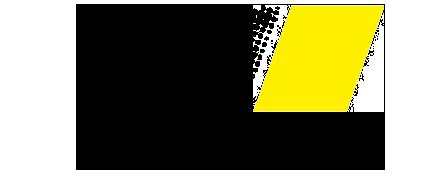 Client Smart Eye logo