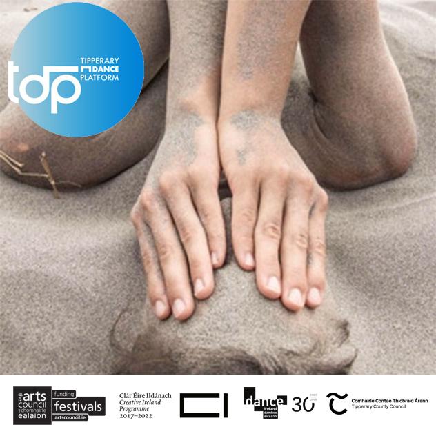 TDP19: Screendance Exhibition