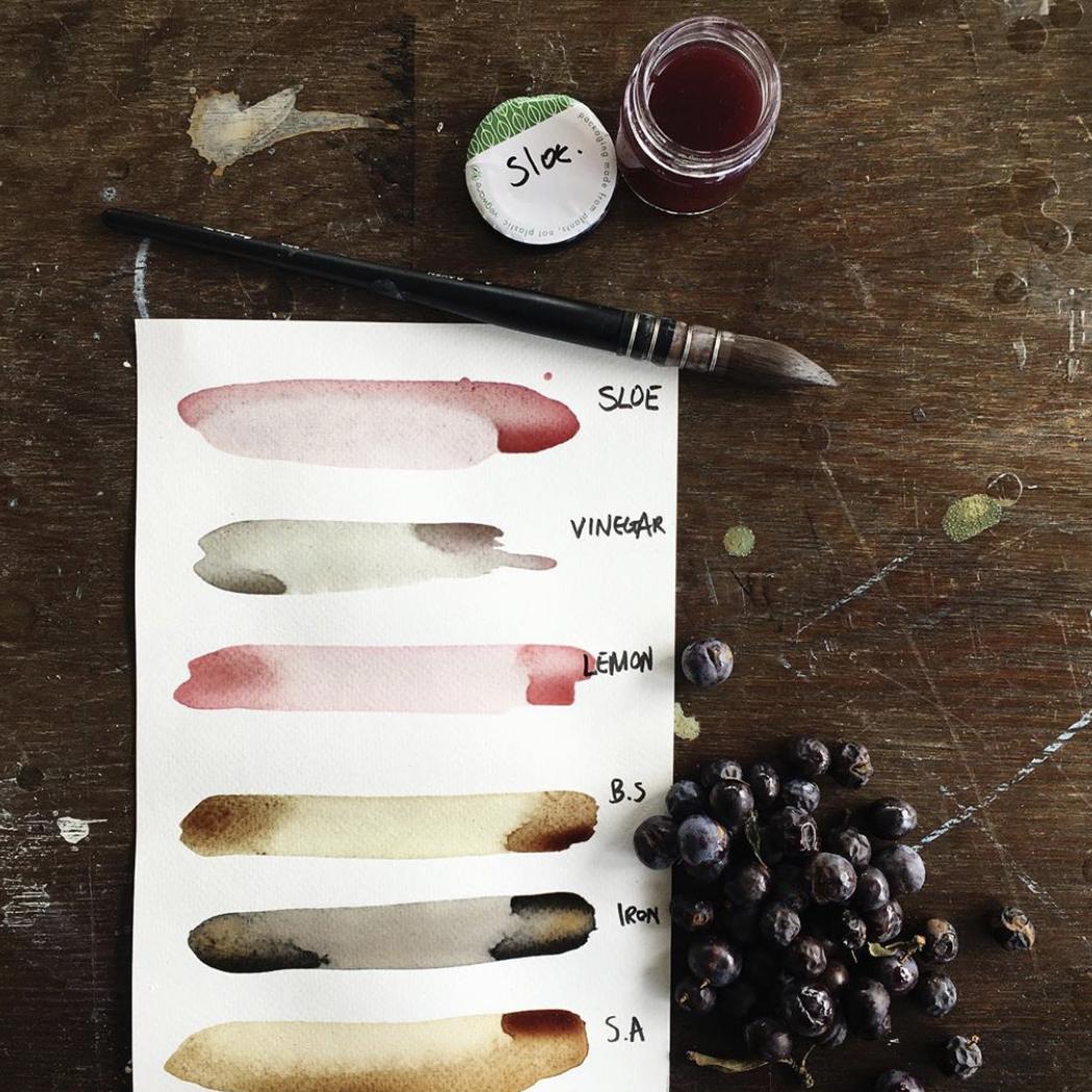 Wild Ink Workshop with Illustrator Annie Hogg