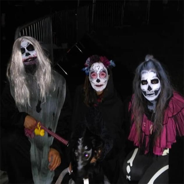 Clonmel Zombie Walk