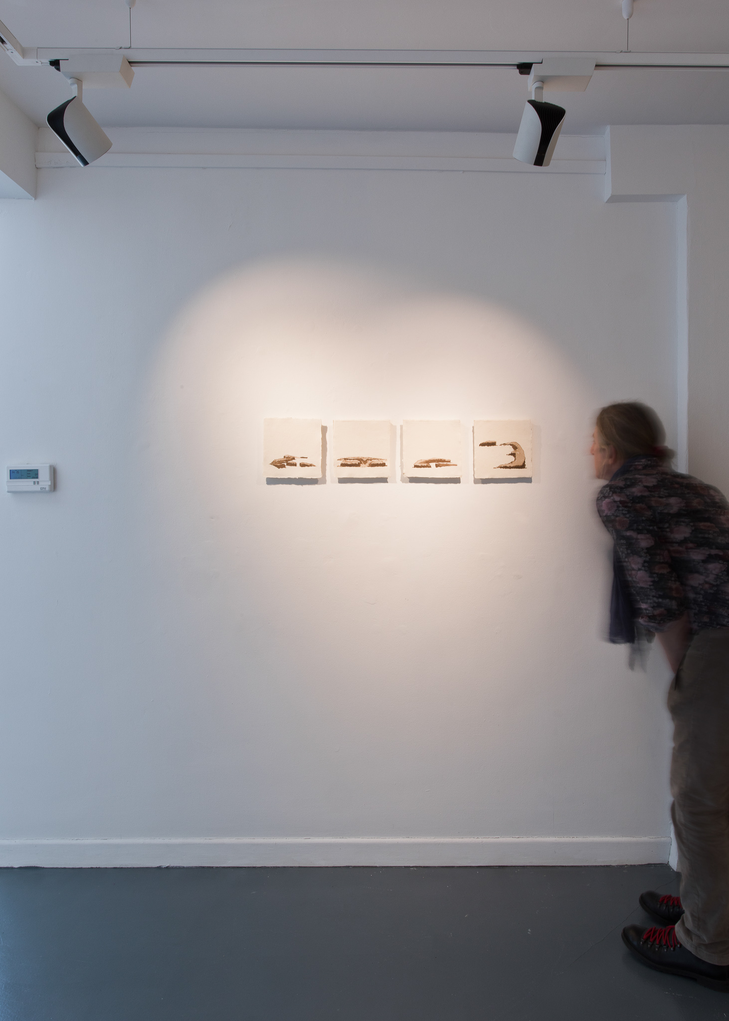 Maria Levinge, Bog cuttings 1-4, 2020 - oak gall on paper on board - 13x18cm - €300