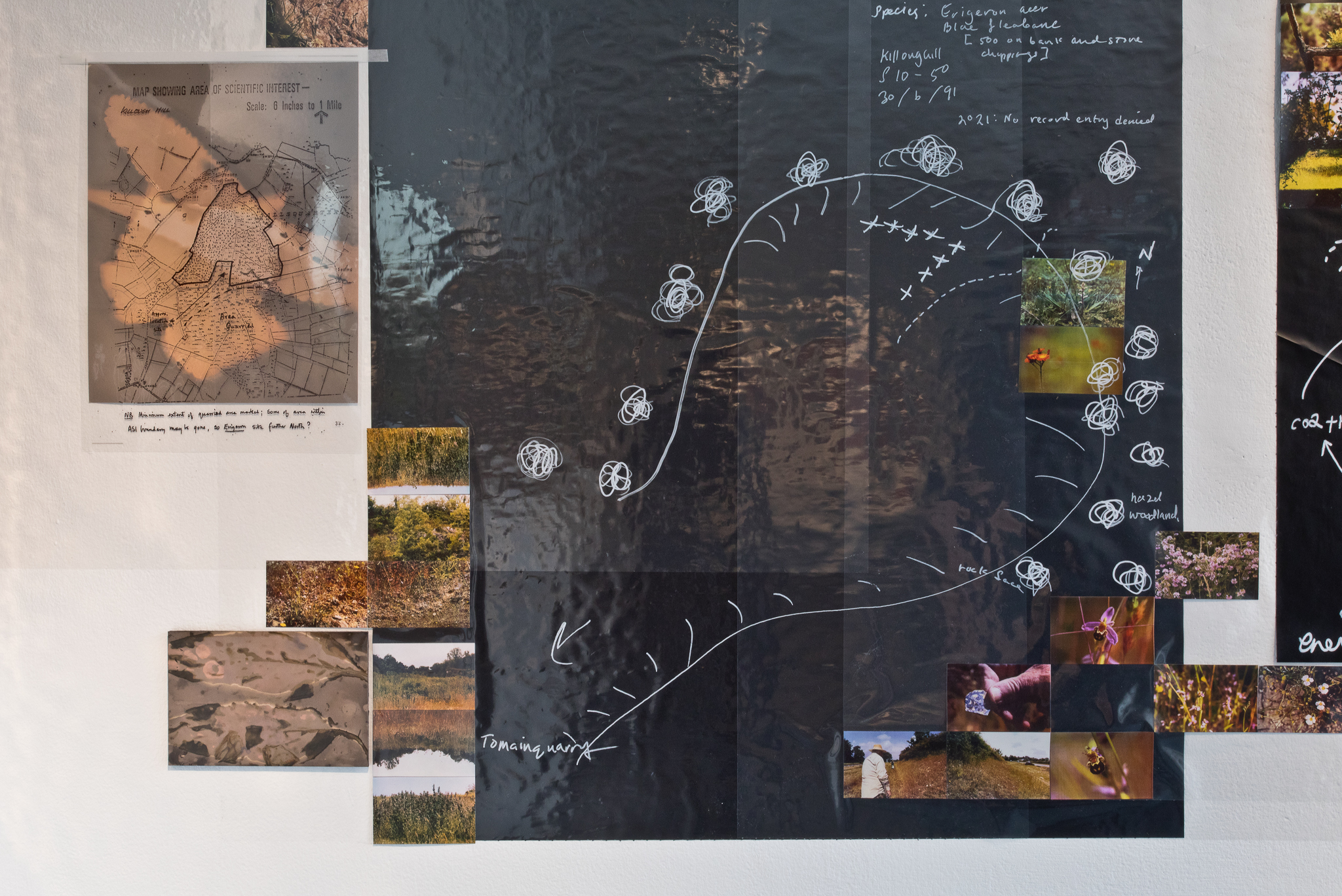Detail of Christine Mackey, Outcropping,2021.  Installation combining drawings, photographs, film and objects