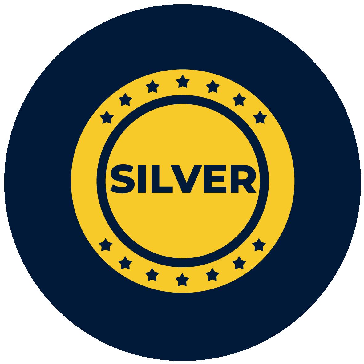 silver coin icon