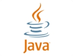 We are using Java