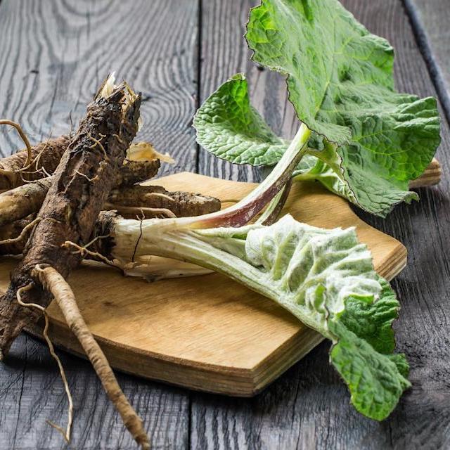 Burdock Root | Organic Dried Herb