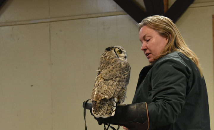 Woman holding an owl