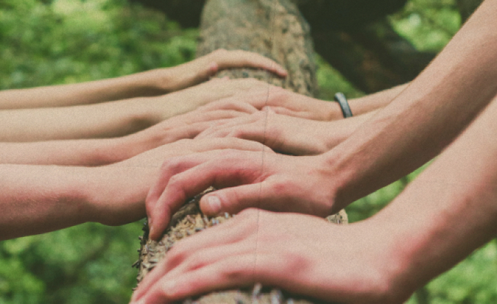 Hands on a log