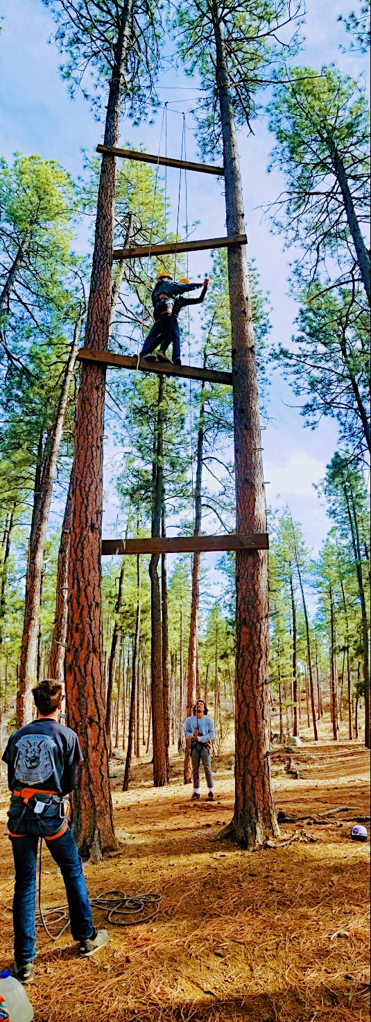 Kid on the high ropes