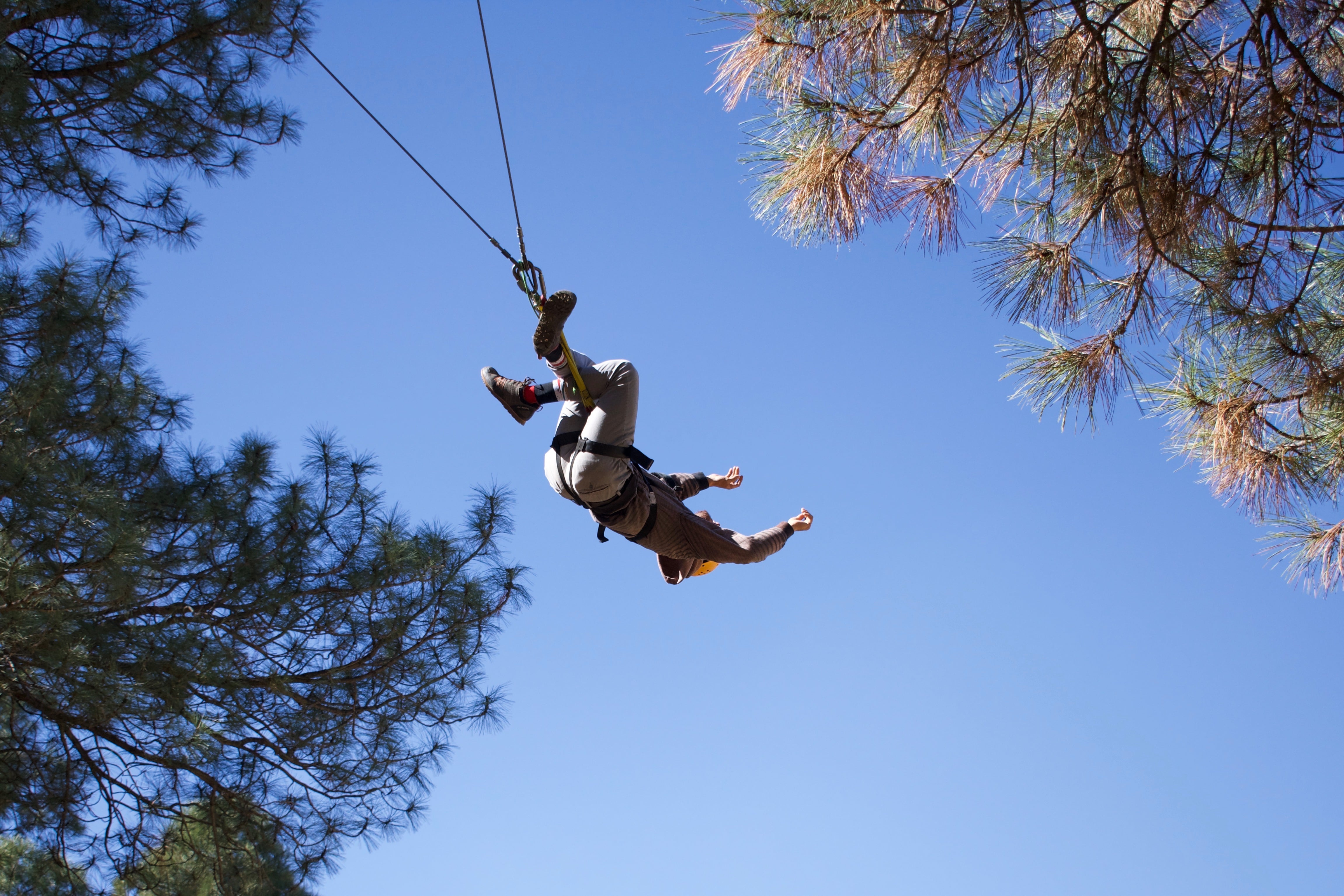 Person on the high ropes course
