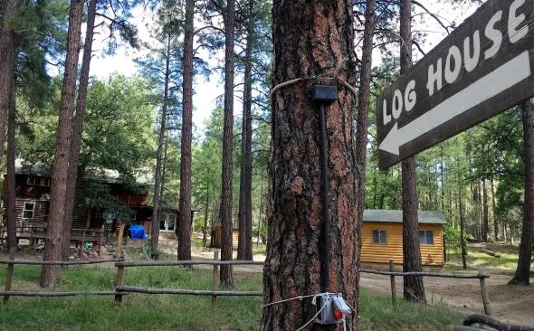 Log House sign