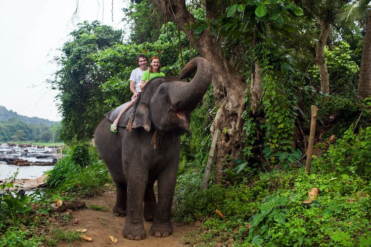 Couple riding an elephant