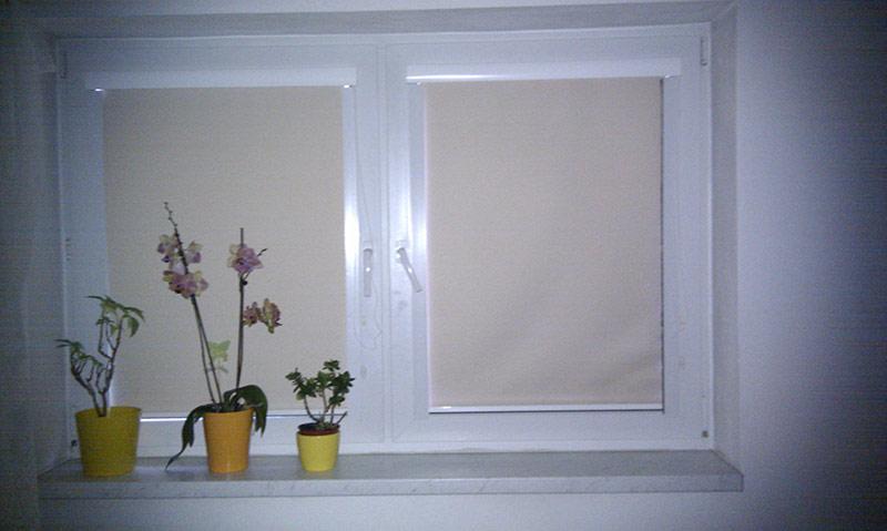 Black out roletka na okno 2